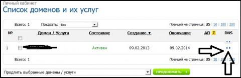 Панель управления доменом Reg.ru