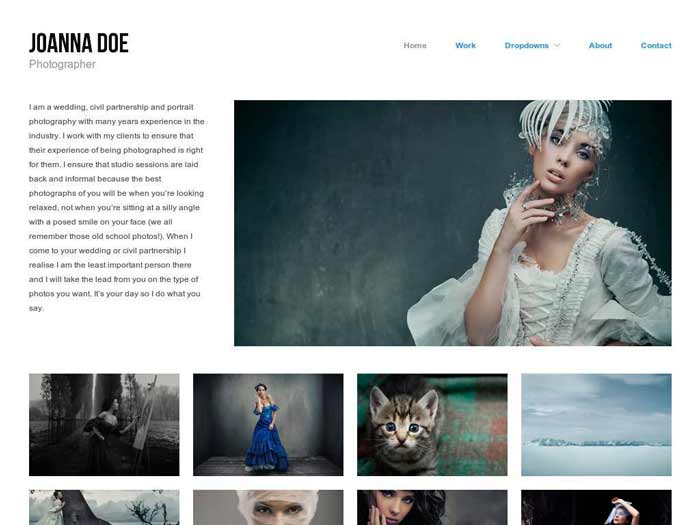 tema-portfolio-wordpress